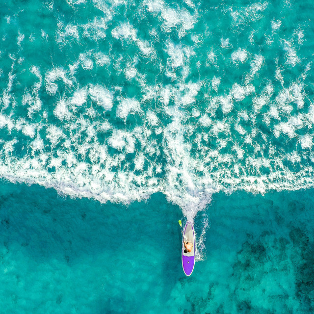 """Paddle Boarder"" stock image"