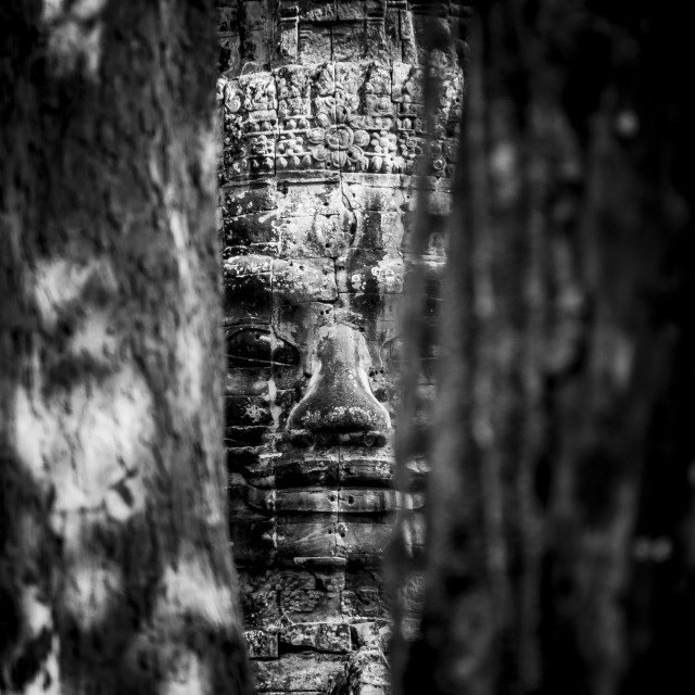"""Smiling Buddha Black and White Portrait"" stock image"