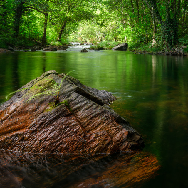"""""""Reddish rock in the middle of a river"""" stock image"""