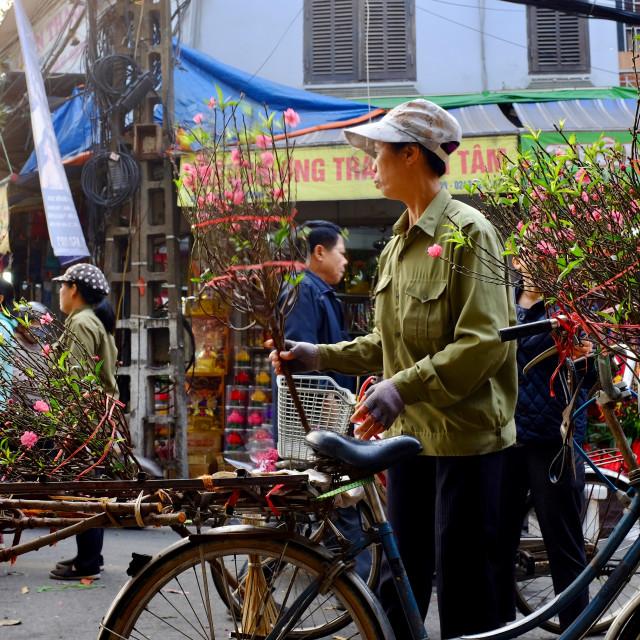 """Tet- Lunar New Year in Vietnam"" stock image"