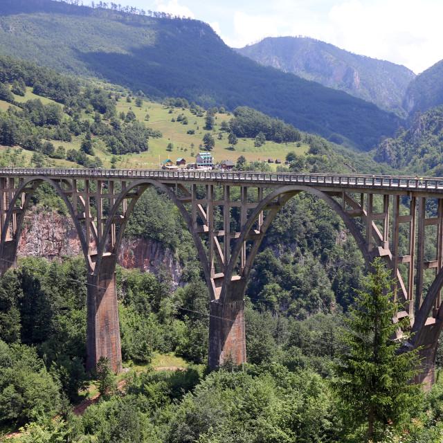 """""""Djurdjevic bridge Tara river canyon Montenegro"""" stock image"""