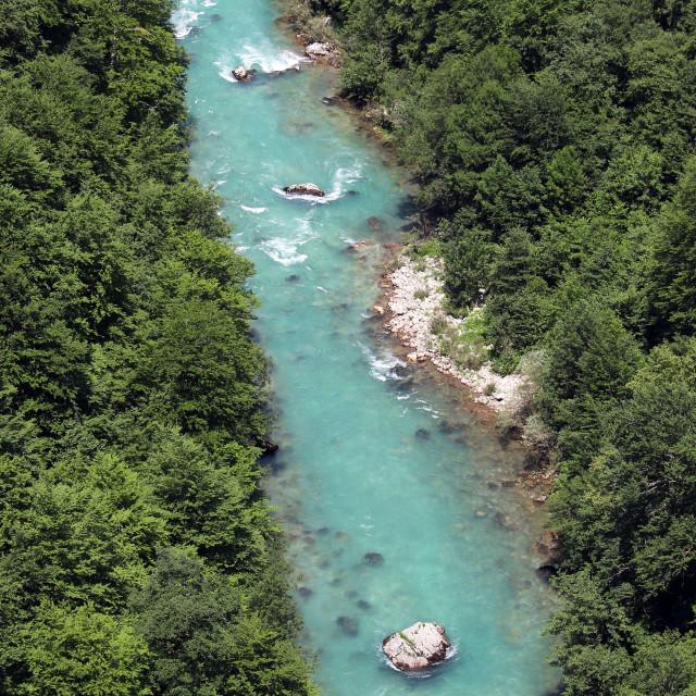 """Tara river Montenegro summer season"" stock image"