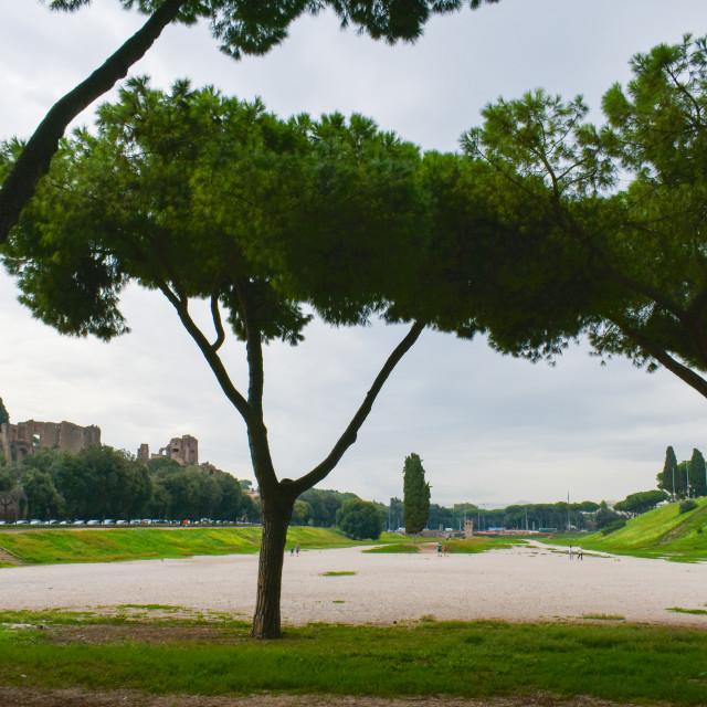 """Circo Massimo in Roma"" stock image"