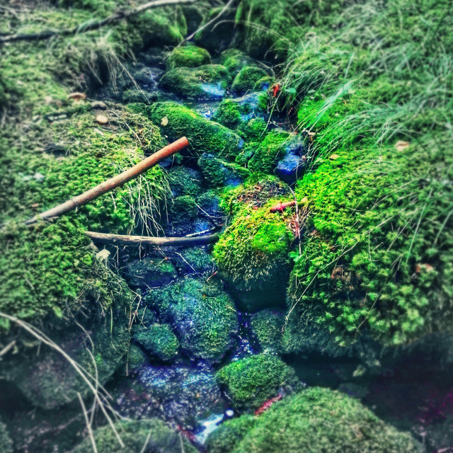 """""""Little stream in blue and green"""" stock image"""