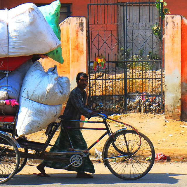 """""""Indian man carrying heavy load Jaipur India"""" stock image"""