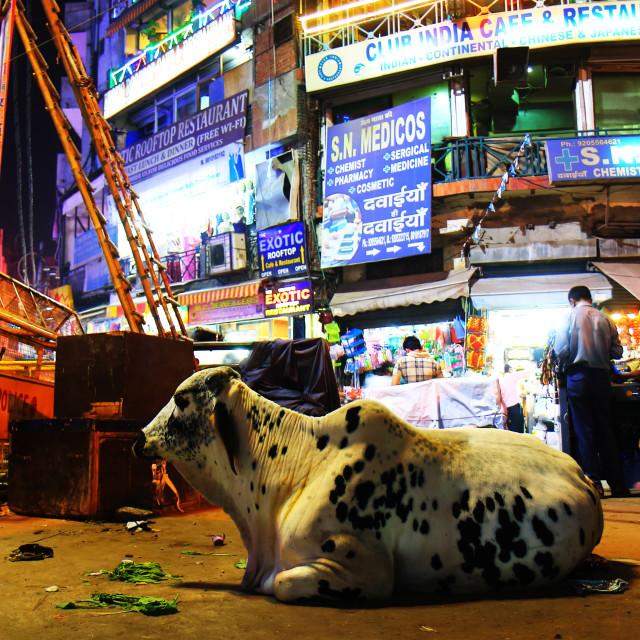 """""""Street market night cityscape New Delhi India"""" stock image"""