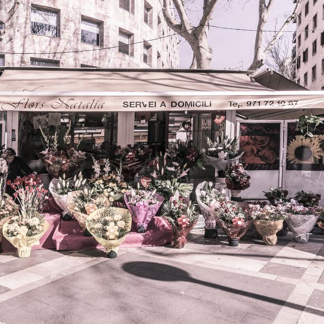 """Flower vendors on La Rambla"" stock image"