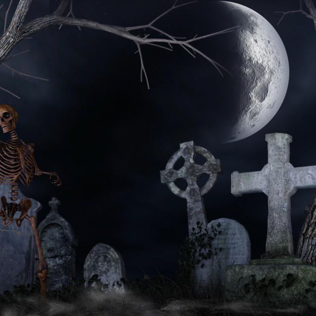 """Skeleton in a spooky cemetery"" stock image"
