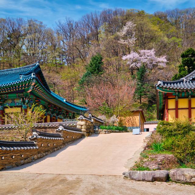 """""""Sinheungsa temple in Seoraksan National Park, Seoraksan, South Korea"""" stock image"""