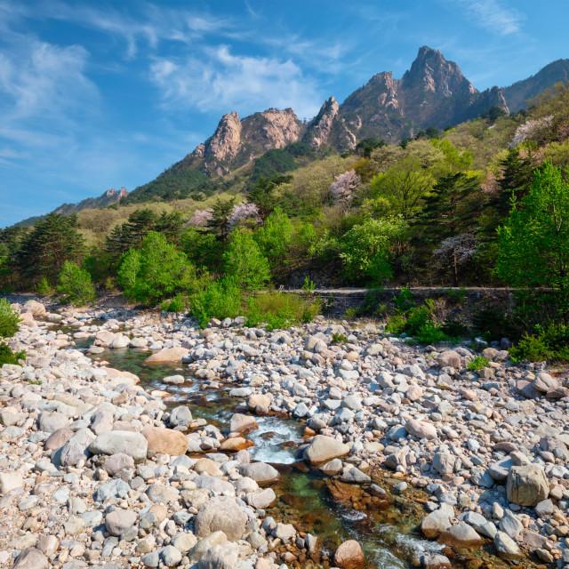 """Seoraksan National Park, South Korea"" stock image"