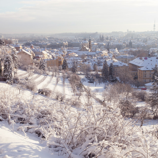 """Petrin Hill and Prague Hradchany winter panorama"" stock image"