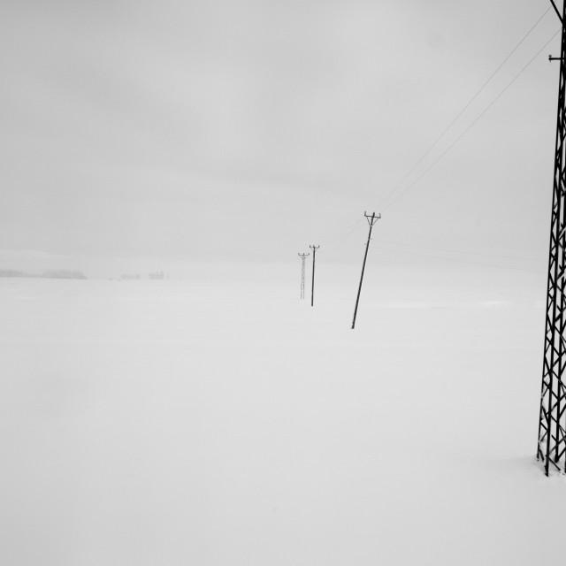 """""""Power poles"""" stock image"""