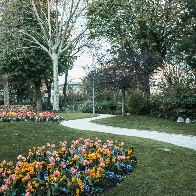 """""""Parisian Flowers and Path"""" stock image"""