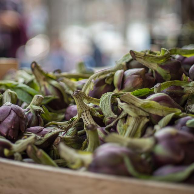 """Venetian Market Purple Artichokes"" stock image"