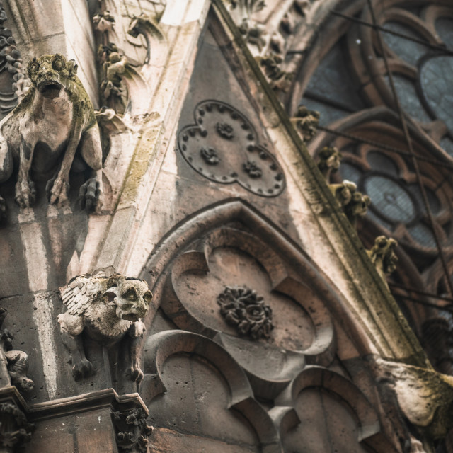 """""""Gargoyles on Notre Dame Cathedral"""" stock image"""