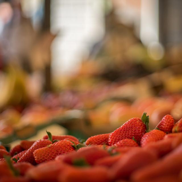 """Venetian Market Strawberries"" stock image"