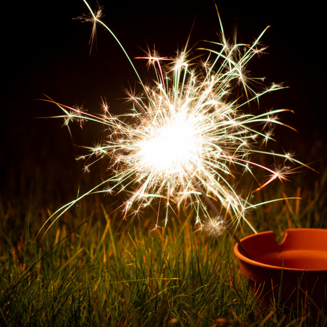 """Sparkler in a plant pot"" stock image"