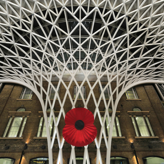 """""""The huge poppy at Kings Cross Railway Station on Armistice Day in London..."""" stock image"""