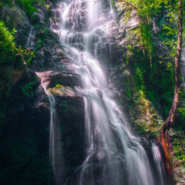 """""""fantastic waterfall illuminated by a springtime light"""" stock image"""