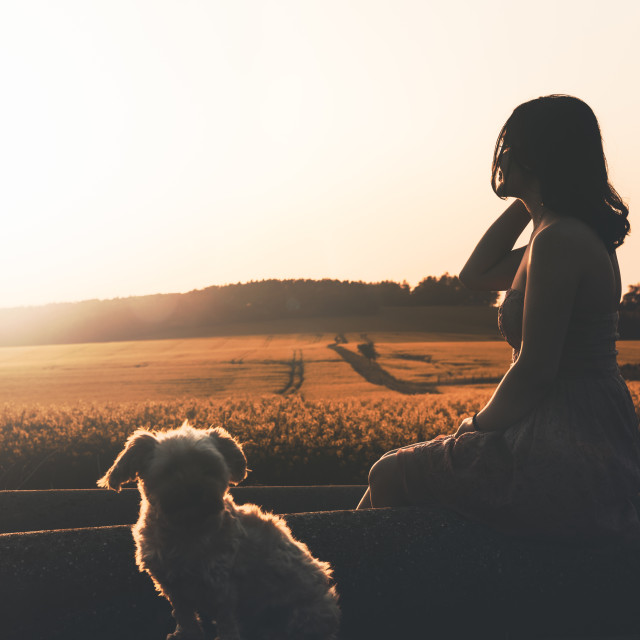 """Woman silhouette and dog enjoying sunset in nature"" stock image"