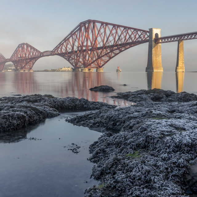 """The Forth Bridge in Winter"" stock image"