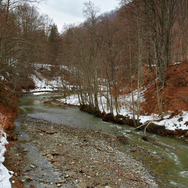 """""""River in winter time"""" stock image"""