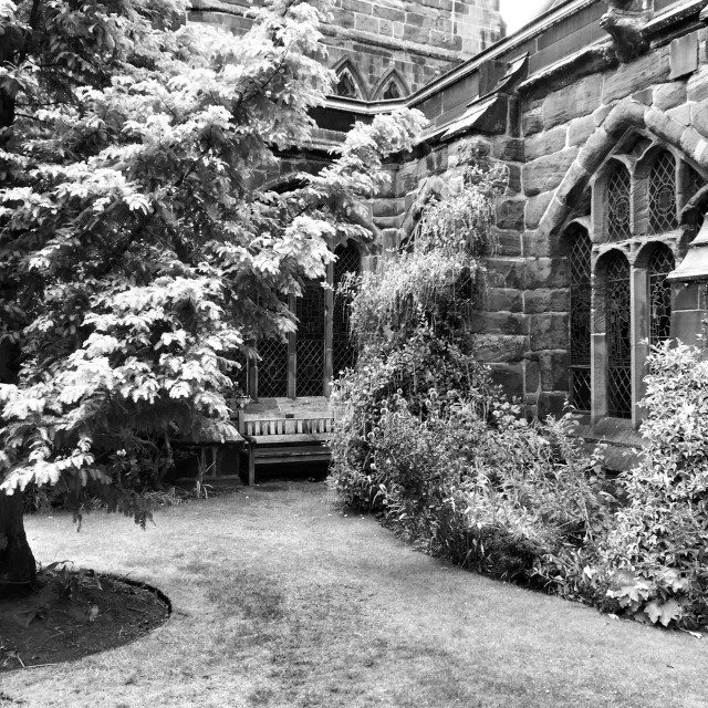 """""""The Cloister Gardens, Chester Cathedral."""" stock image"""