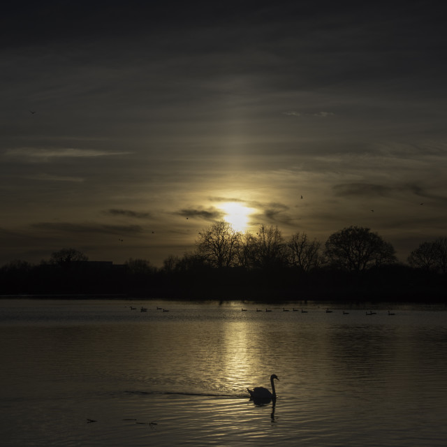 """""""Low winter sun over the lake"""" stock image"""