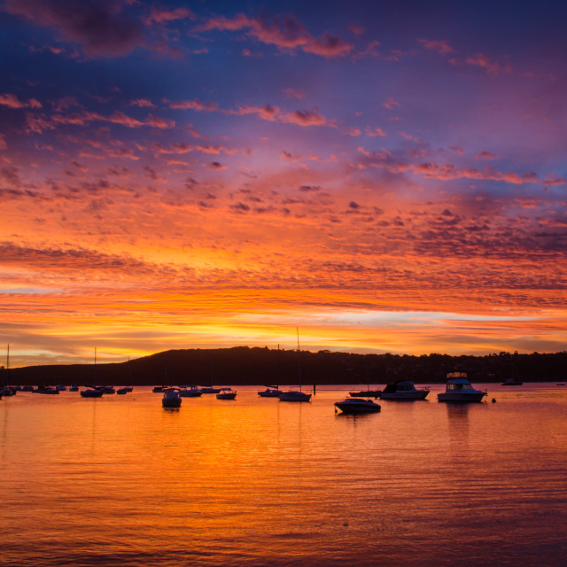 """""""Sunset over the Manly harbour in Australia"""" stock image"""