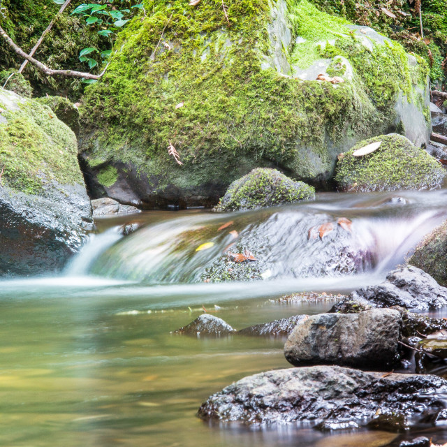 """""""Flowing water"""" stock image"""