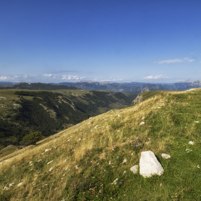 """""""Beautiful landscape in Montenegro with fresh grass and beautiful peaks. Durmitor National Park in Montenegro."""" stock image"""