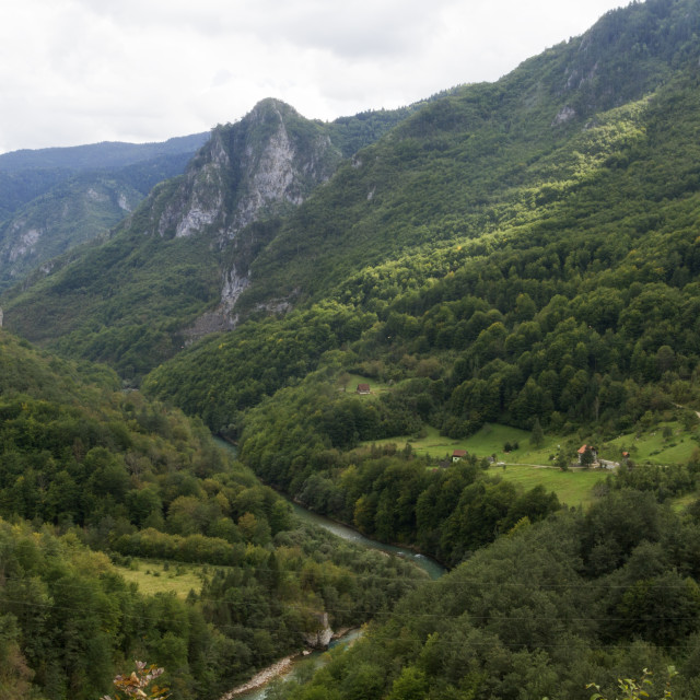 """""""Tara canyon, Montenegro. The second deepest canyon in the World after the Grand Canyon, USA"""" stock image"""