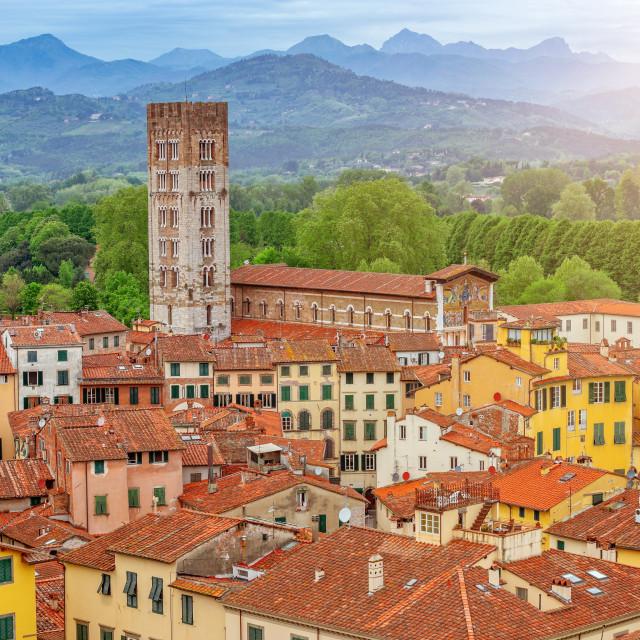 """""""Lucca landscape, Tuscany, Italy, Europe"""" stock image"""