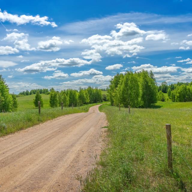 """Green meadow landscape"" stock image"