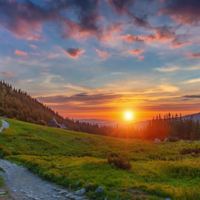 """""""Mountains sunrise landscape, Zakopane, Poland, Europe"""" stock image"""