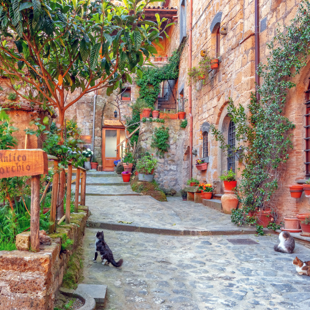 """""""Beautiful alley in old town, Italy, Europe"""" stock image"""