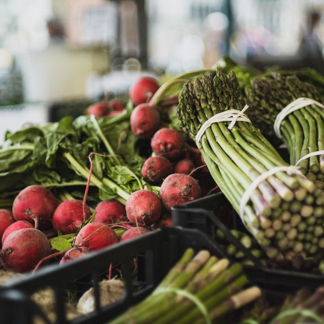 """Venetian Market Radishes and Asparagus Stalks"" stock image"