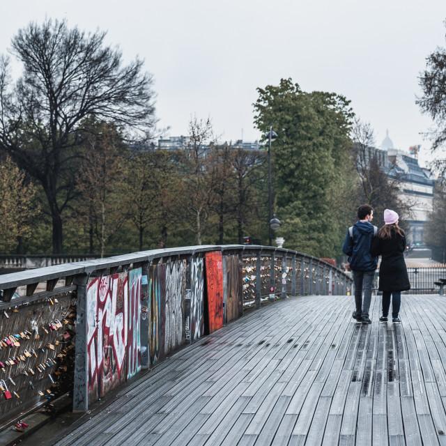 """""""A couple Explores the Paris Bridges"""" stock image"""