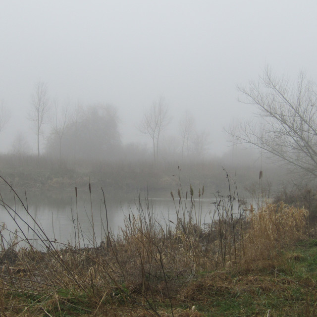 """River Thames, Oxfordshire in the fog"" stock image"
