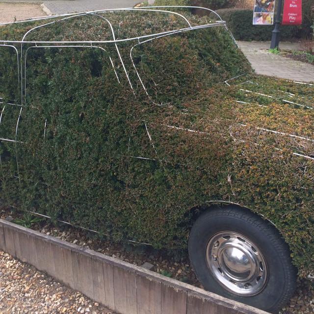 """""""Mini car metal frame in greenery"""" stock image"""