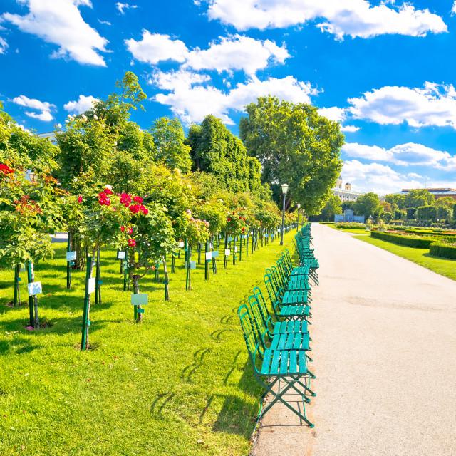 """Green Volksgarten park of Vienna public garden view"" stock image"