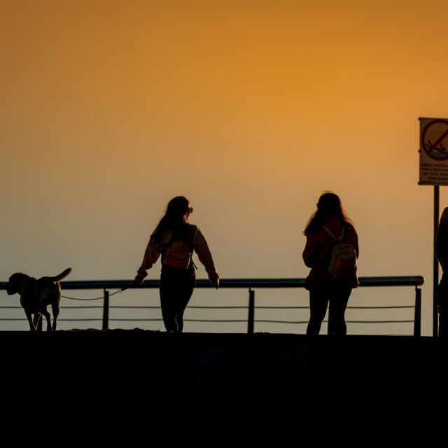 """Walking the dog at sunset"" stock image"