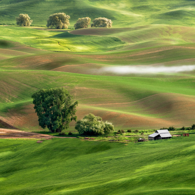 """Crop Duster in the Palouse"" stock image"