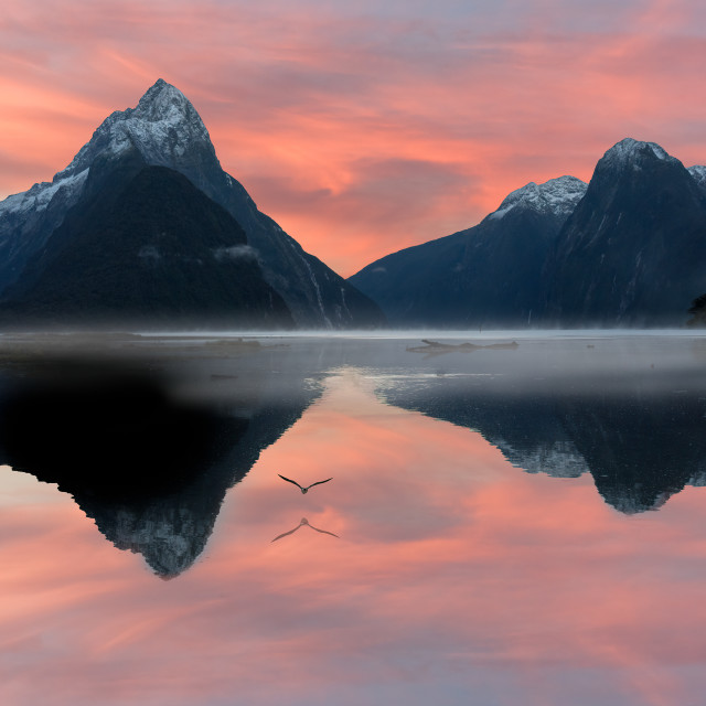 """Milford Sound Sunrise"" stock image"
