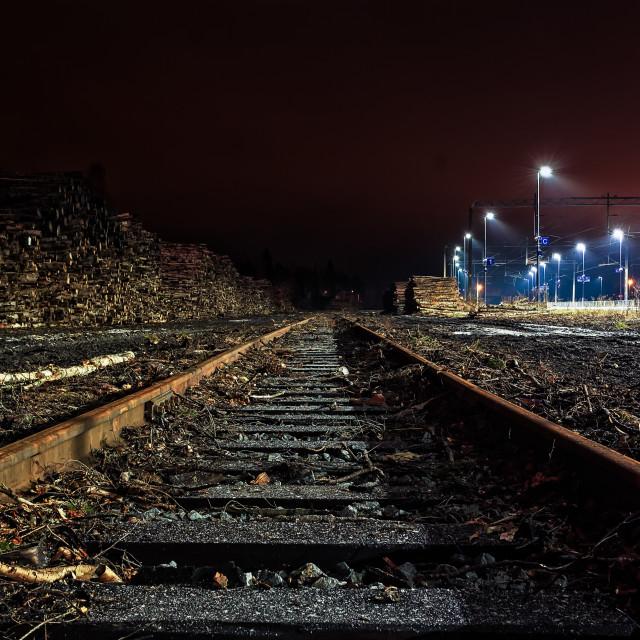 """Railroad Tracks To The Horizon"" stock image"