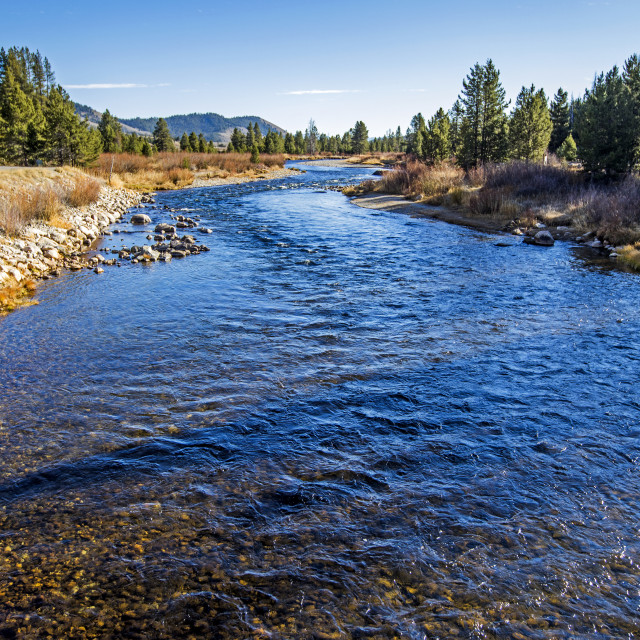 """""""River in Stanley, Idaho"""" stock image"""