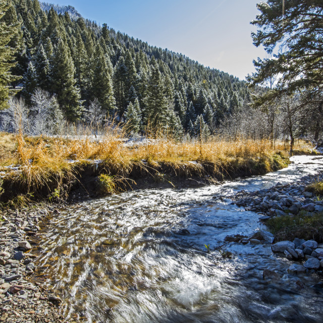 """""""River during winter in Sun Valley, Idaho"""" stock image"""