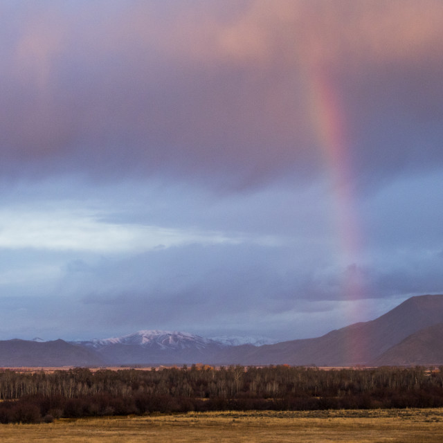 """""""Rainbow above forest and mountains in Picabo, Idaho"""" stock image"""