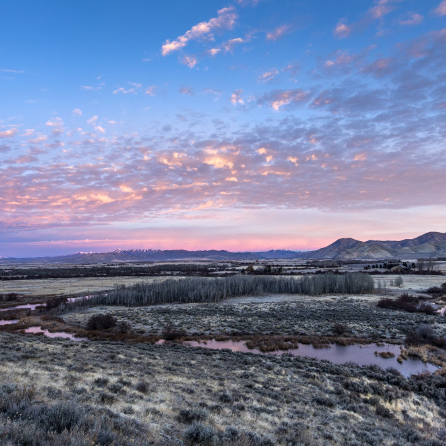 """""""Stream and field at sunset in Picabo, Idaho"""" stock image"""