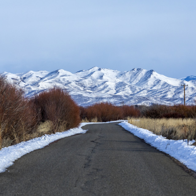 """""""Snow beside road in Picabo, Idaho"""" stock image"""